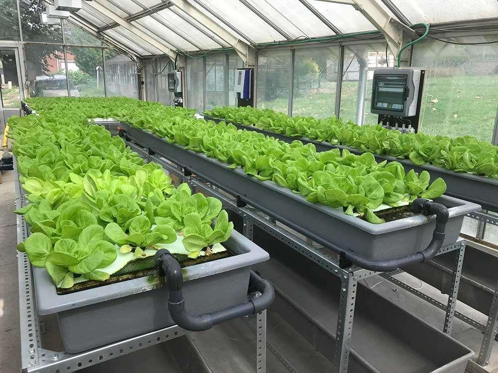 Université Gembloux Agro-Biotech